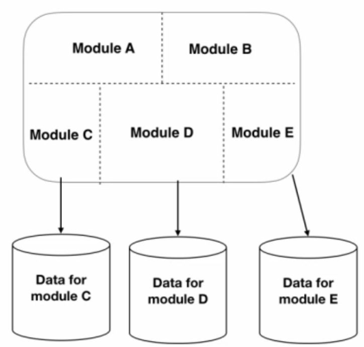 Modular monolith architecture with multiple databases